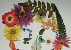 leaves-flowers-scrapbooking